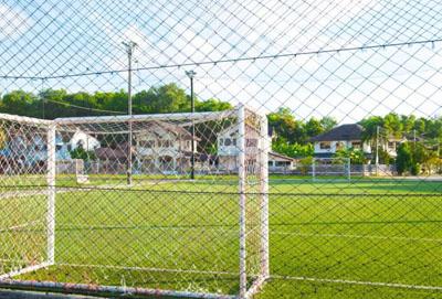 Piłkochwyty na boiska
