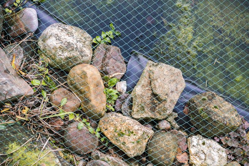 Widok zgóry nasiatkę zabezpieczającą naoczko wodne.