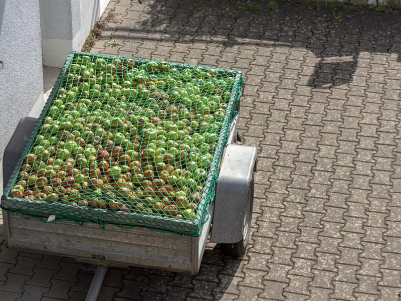Zielona siatka zabezpieczająca ładunek jabłek naprzyczepce samochodowej